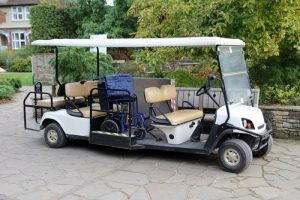 Handicap Accessible Golf Cart