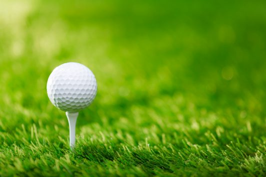 Blue Valley Lutheran Homes Annual Golf Tournament